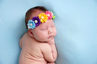 Kaleigh's newborn Session